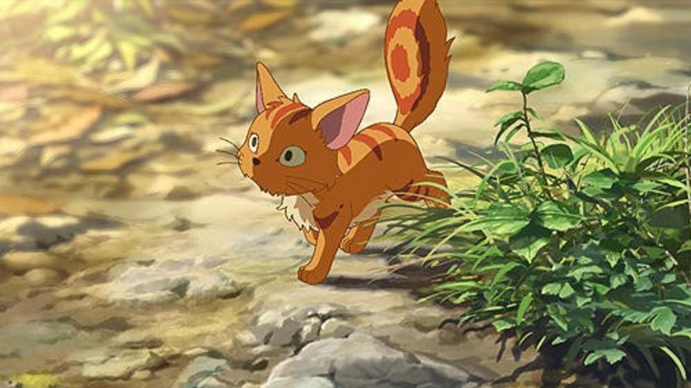新海誠の猫好きレベルを超検証。やはり猫が出てくる作品が多い?
